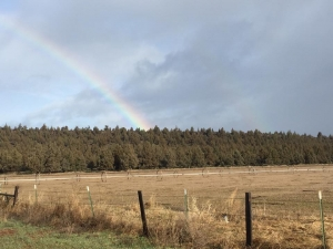 Rainbow at the Ranch