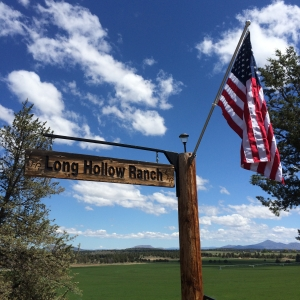 New looks at Long Hollow Ranch