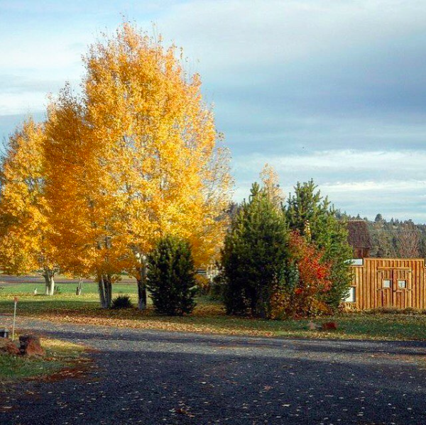 autumn in Central Oregon at Long Hollow Ranch