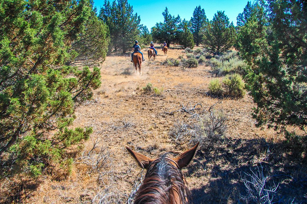 Long Hollow Ranch - Sisters, Oregon Dude Ranch Site Map