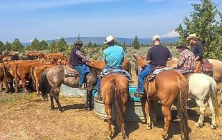 Long Hollow Ranch in Sisters, Oregon