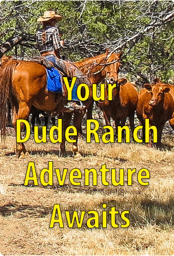 Oregon's LHR Dude Ranch Vacations Awaits